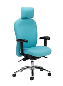 Blue Posture High Back Chair with Headrest