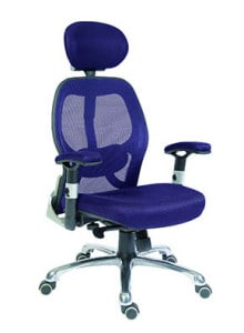 Blue Mesh Back Chair