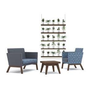 Gray Armchair, Blue Armchair and Coffee Table