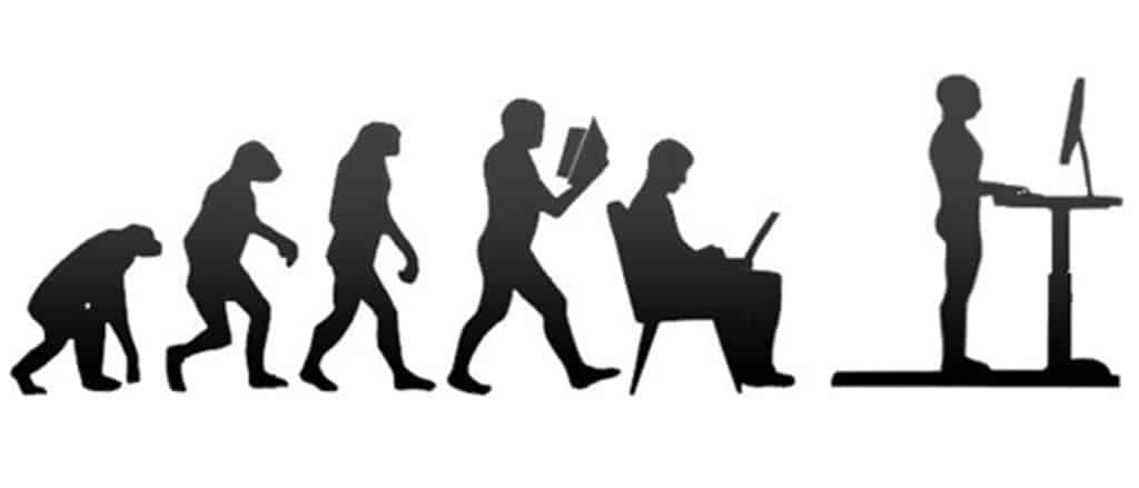 The evolution of sitting